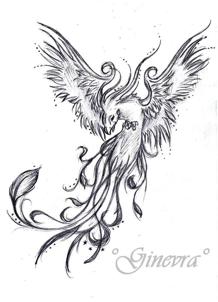 This Will Be My Phoenix Tattoo Full Color W The Japanese