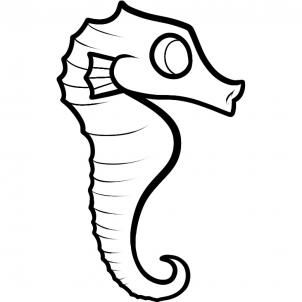 How to Draw a Seahorse for Kids - Animals For Kids