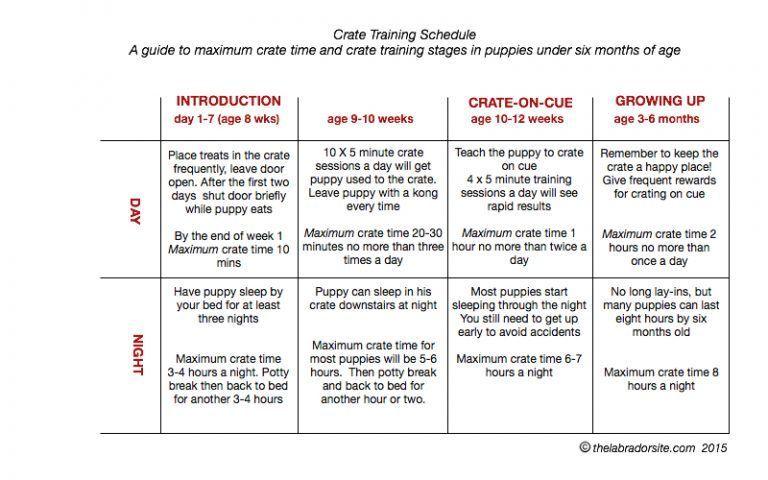 Crate Training Chart Puppieslabrador Puppy Schedule Crate Training Crate Training Schedule
