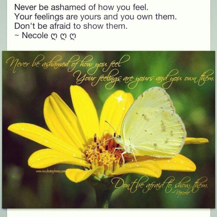 Never be ashamed of your feelings. #ns #feelings #life