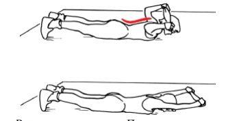 Картинки по запросу упражнения для спины с резинкой ...
