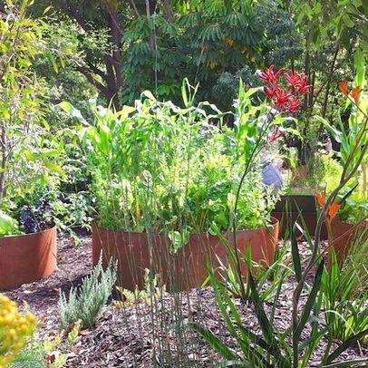 shenton park eclectic landscape perth sustainable garden design perth - Garden Design Perth