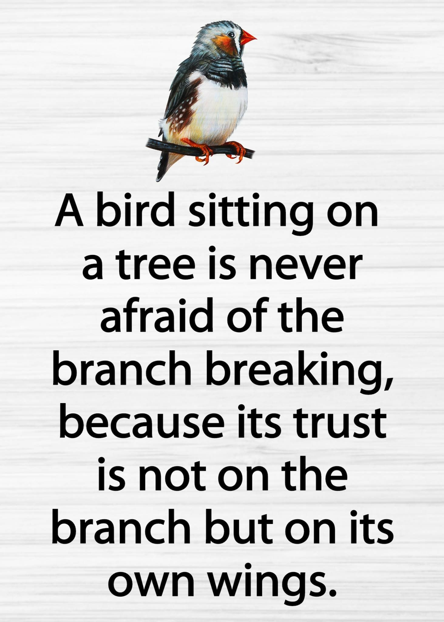 Pin By Manisha K On Relationship Trust Love Life Quotes Trust