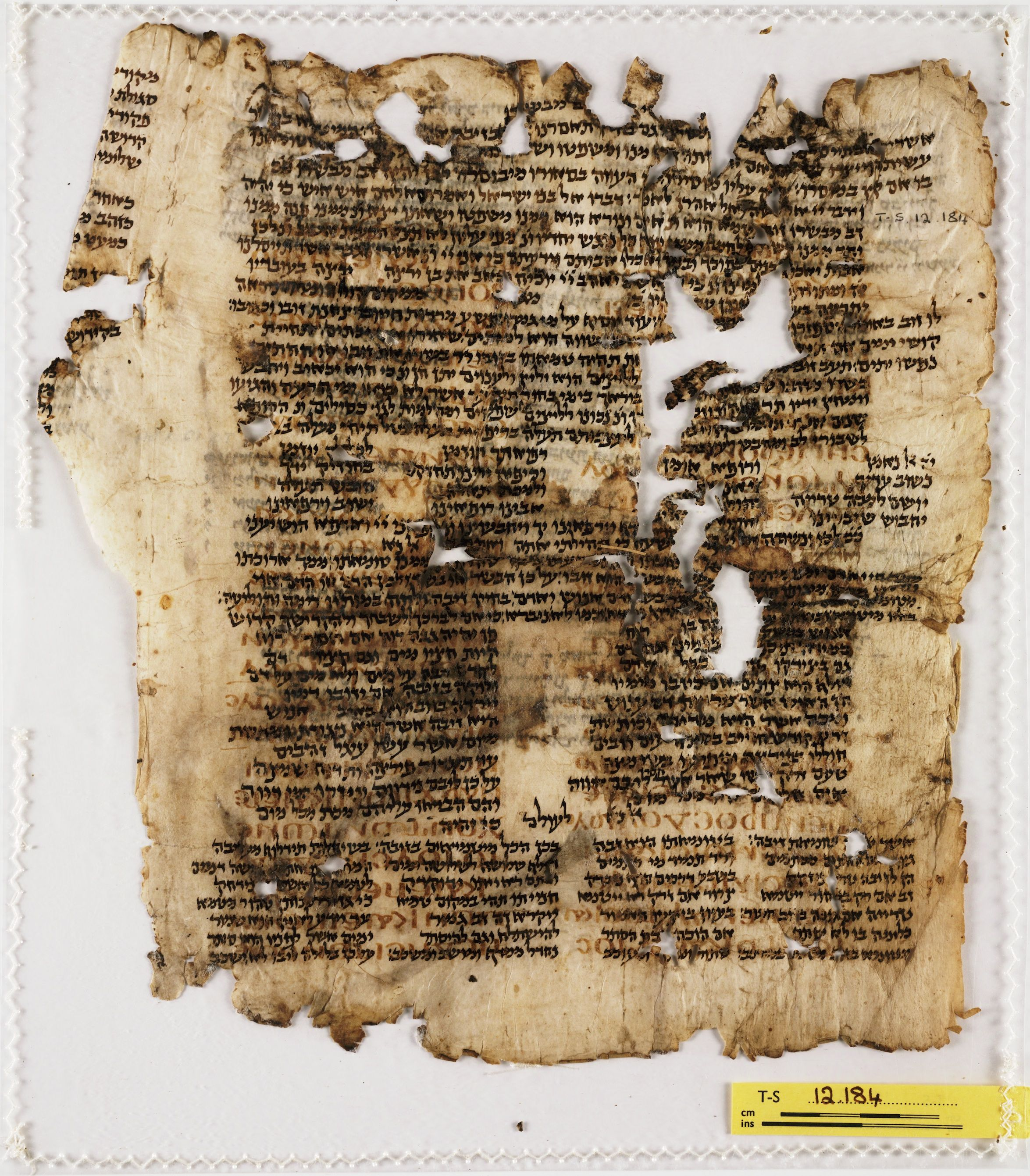 Aquilas greek translation of the bible early bibles pinterest aquilas greek translation of the bible fandeluxe Choice Image