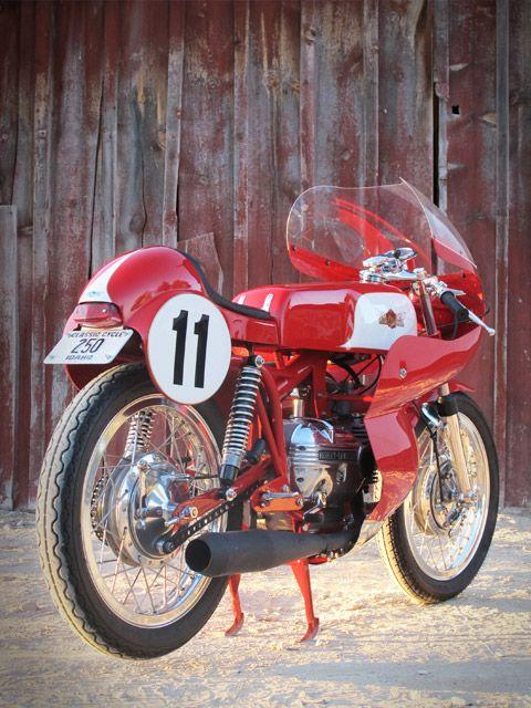 Harley - Aermacchi (but mostly Aermacchi).