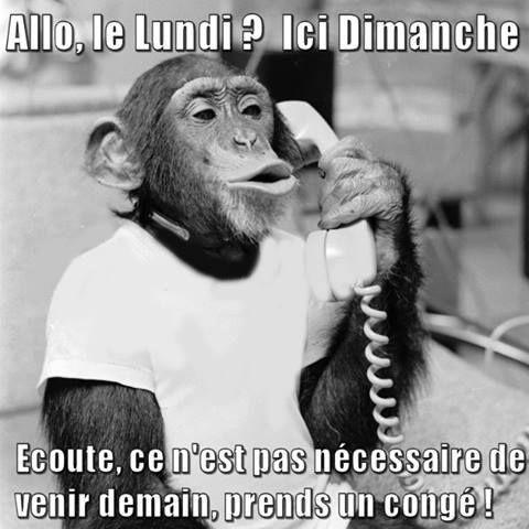 Lundi Dimanche Humour Lundi Drole Et Humour