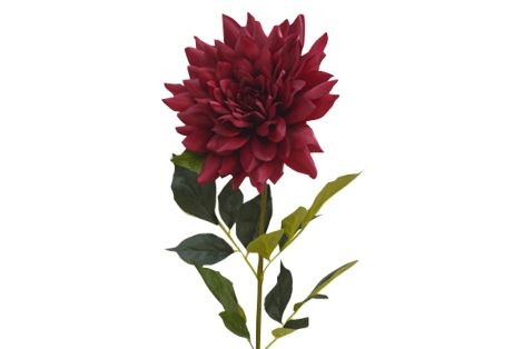 A Loja do Gato Preto | Flor Mum XXL Fushia @ XXL Mum Flower Fushia #alojadogatopreto