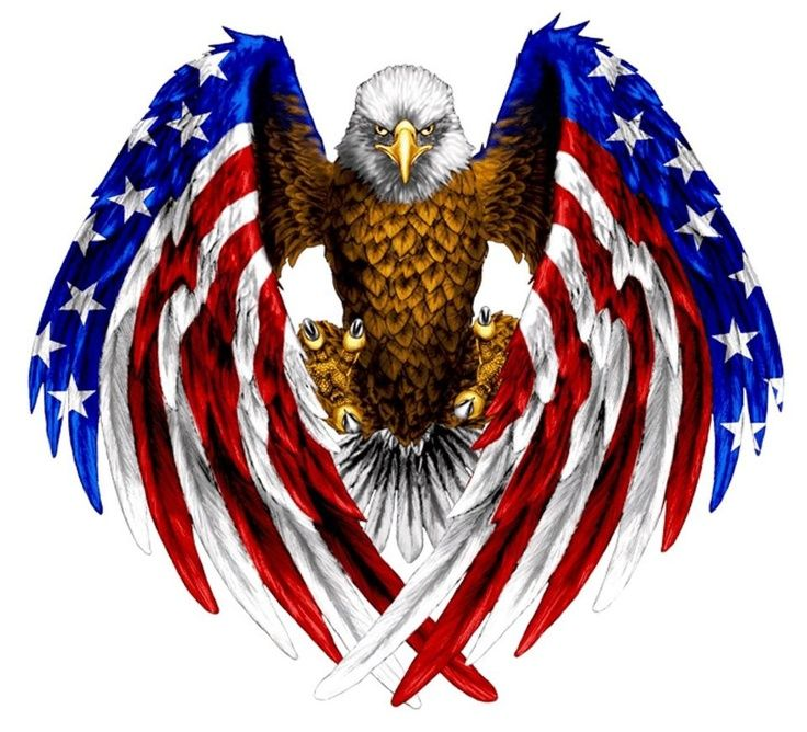 Eagle red white and blue | Patriotic/Millitary | Pinterest ...
