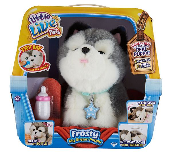 Little Live Pets Frosty My Dream Husky Animated Plush Qvc Com Animated Plush Baby Girl Toys