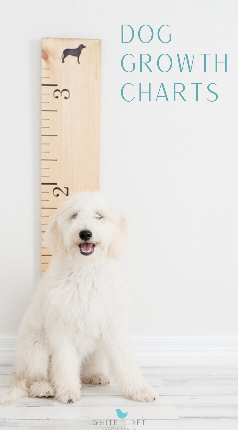 Wooden Growth Chart for Dogs Dog mom gifts, Growth chart