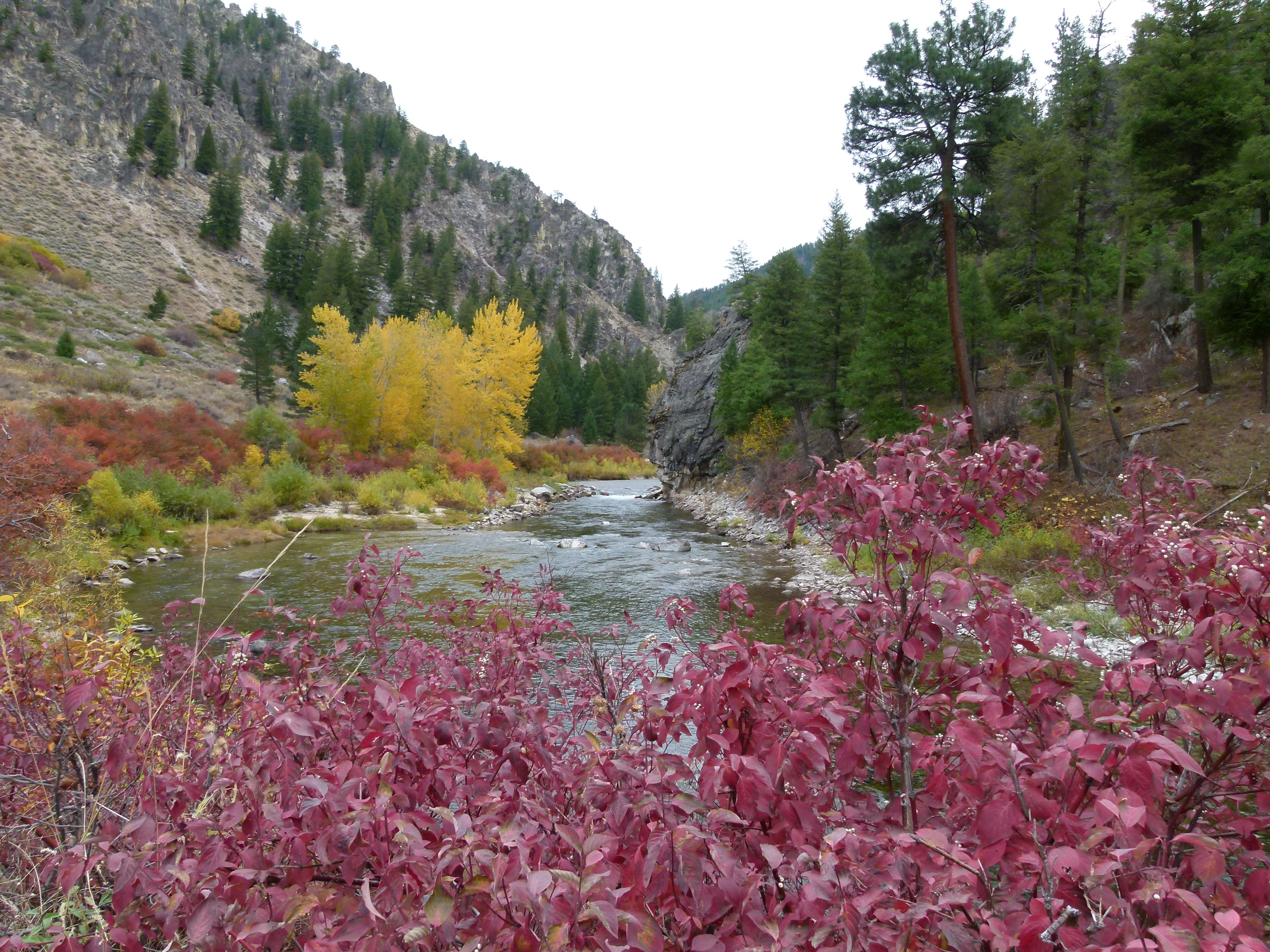South fork of Boise River Oct. 2011
