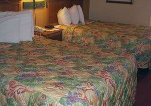 Quality Suites Near Orange County Convention Center Orlando, FL 32819. Upto 25%   Discount Packages. Near by Attractions include Universal Studios, Seaworld,   Orlando's Congo River, Wet N Wild, Fun Spot Action. Free Parking and Free Wifi   internet. Book your room and start saving with SecureReservation. Please Visit here : http://www.qualityinnorlandoidrive.com