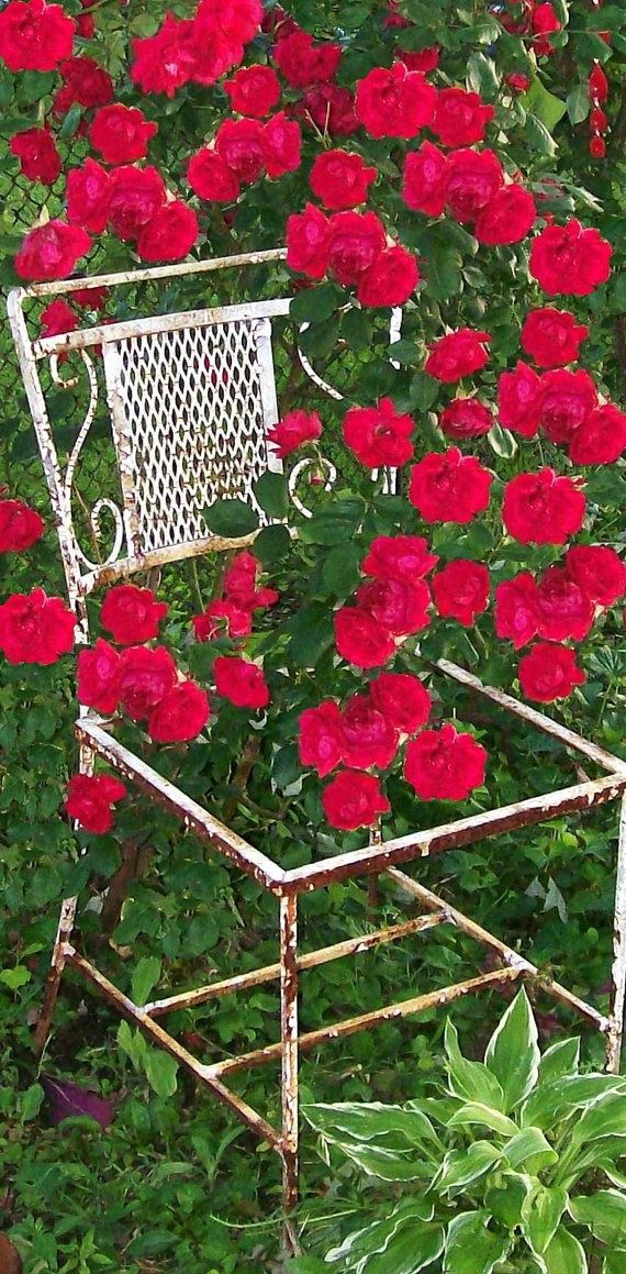 Garden Trellis Containers, Chair And Trellis