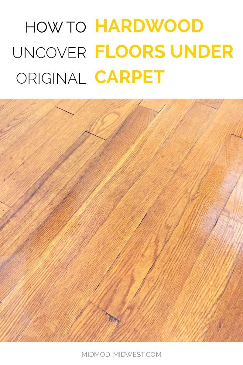 Mid Century Hardwood Floors May Be Hiding Under Your Carpet Flooring Hardwood Floors Hardwood
