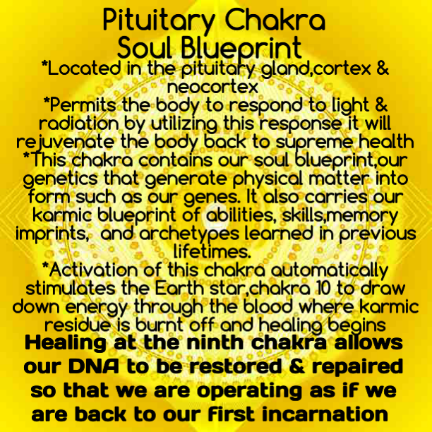 Ninth chakra pituitary chakra soul blueprint of christ ninth chakra pituitary chakra soul blueprint of christ consciousness malvernweather Images