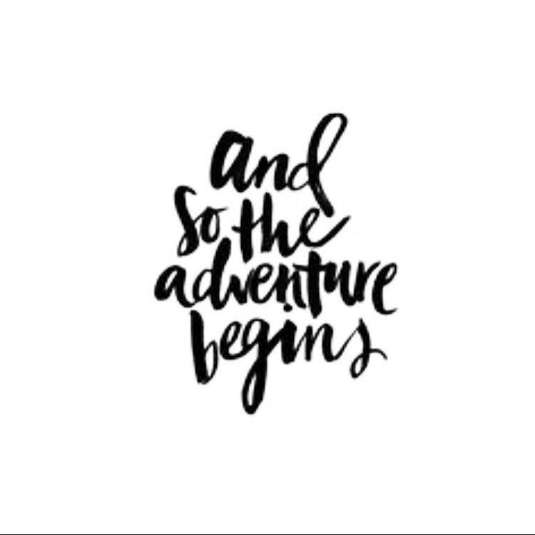 Hello 2017 Nice To Meet You Flourishing Pinterest Quotes