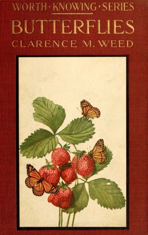 Butterflies worth knowing, by Clarence M. Weed, 1917 [Smithsonian Libraries] -- book cover