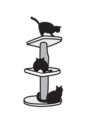 Katzenpsychologie Katzenverhaltensberatung Im Saarland Luxemburg