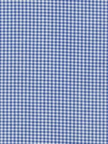 Gingham Sky Fabric Gingham Blue Ivory