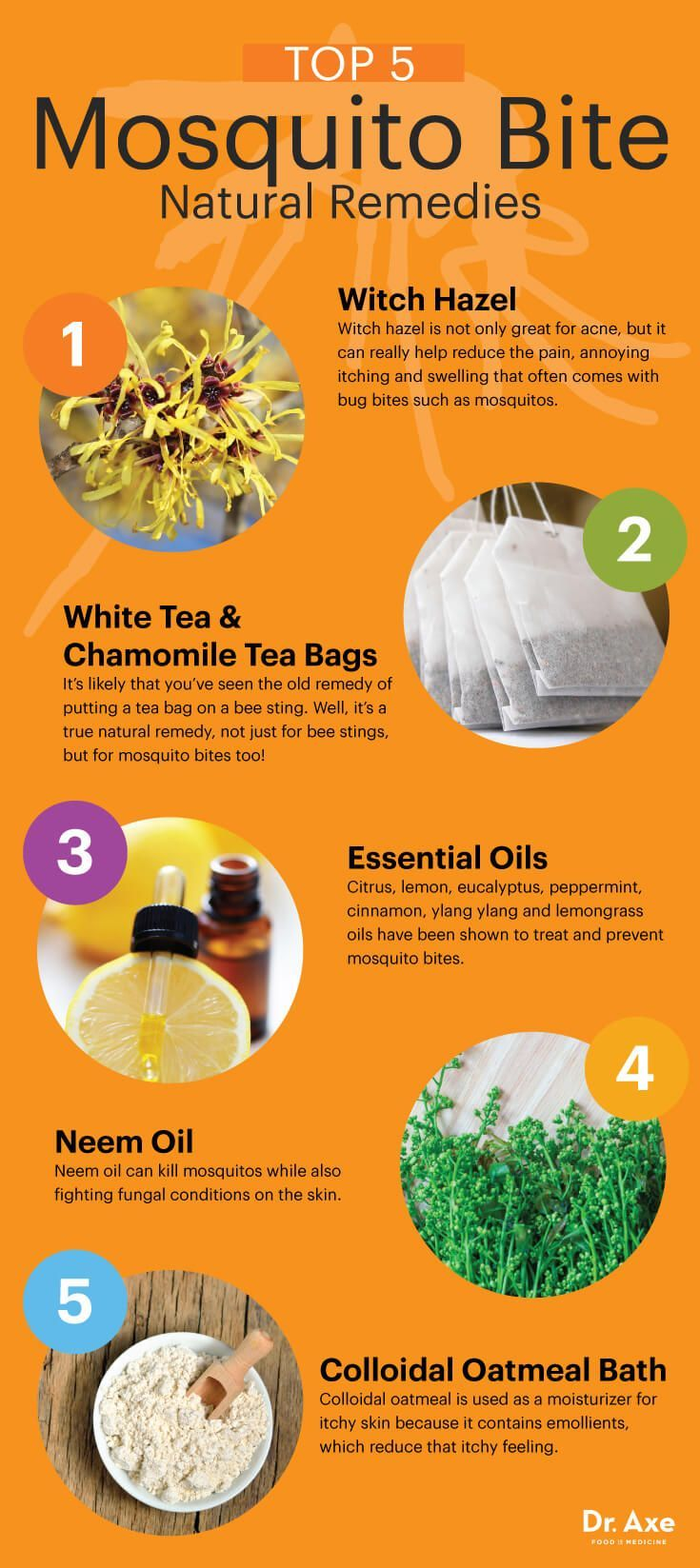 Exceptional The 25+ Best Home Remedies For Mosquito Ideas On Pinterest | Mosquitoes  Bites, Bug Bite Remedy And Mosquito Bite Relief
