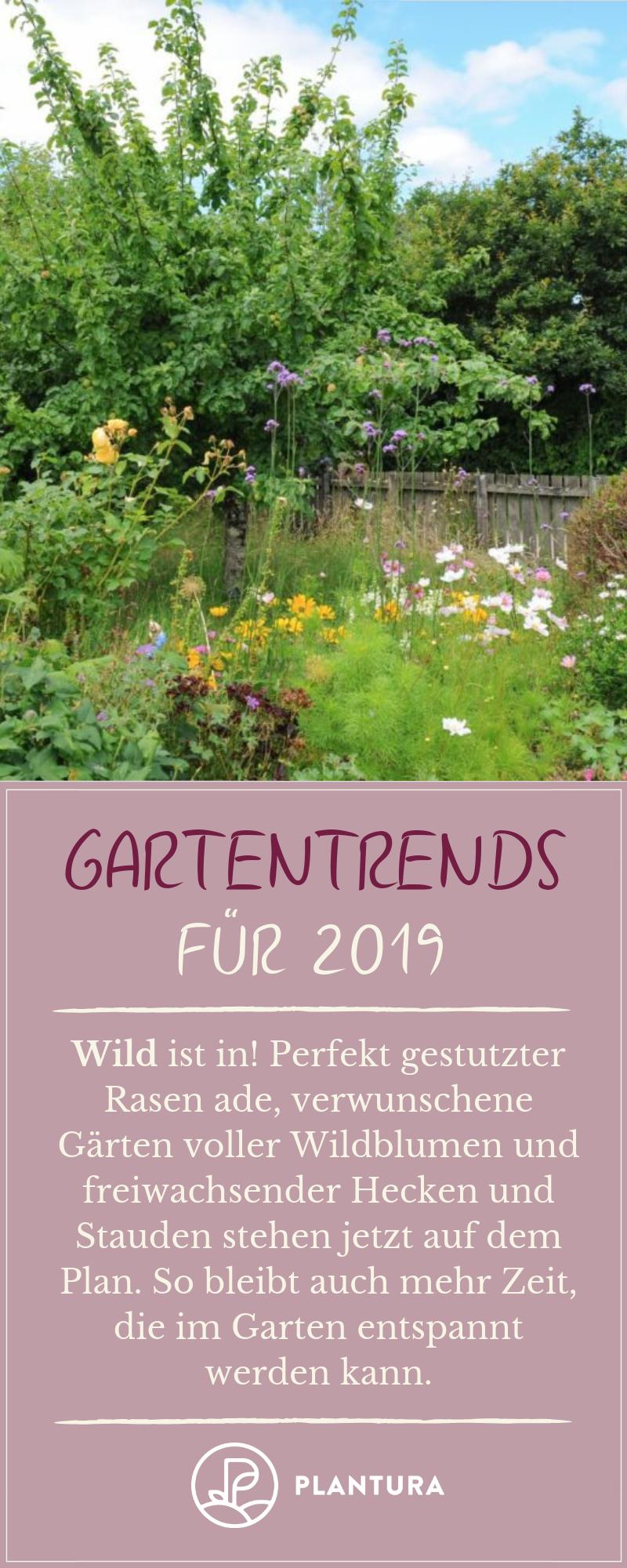 Gartentrends 2019 Naturnahe Garten Penible Geschnittener Rasen Muss Nicht Mehr Sein Leicht Verweilderte Garten Be Naturnaher Garten Garten Straucher Garten