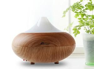 8 Feng Shui Must Haves for Your Living Room: Aromatherapy Diffuser