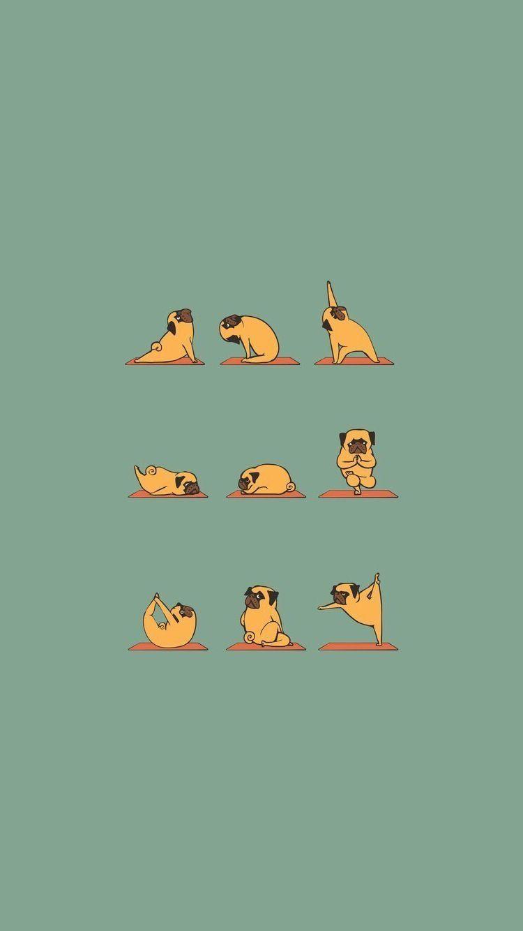 Funny Pug Doing Yoga Iphone 6 Wallpaper Anjing Pug Binatang Kartun Funny pug doing yoga iphone wallpaper