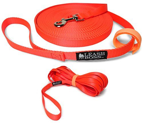 Leashboss Long Trainer  20 Foot 34 Inch Lead  Nylon Dog Training Leash with Storage Strap  K9 Recall 20 Ft 34 Orange *** Visit the image link more details.(This is an Amazon affiliate link and I receive a commission for the sales)
