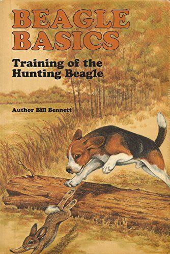 Beagle Training Basics The Care Training And Hunting Of Https