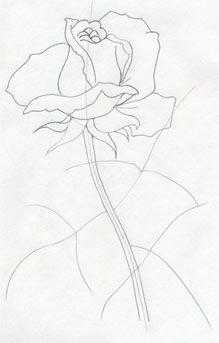 Rose Simple Flower Designs For Pencil Drawing Valoblogi Com