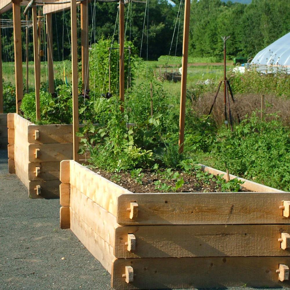 5 Vertical Vegetable Garden Ideas For Beginners: Farmstead Raised Garden Bed