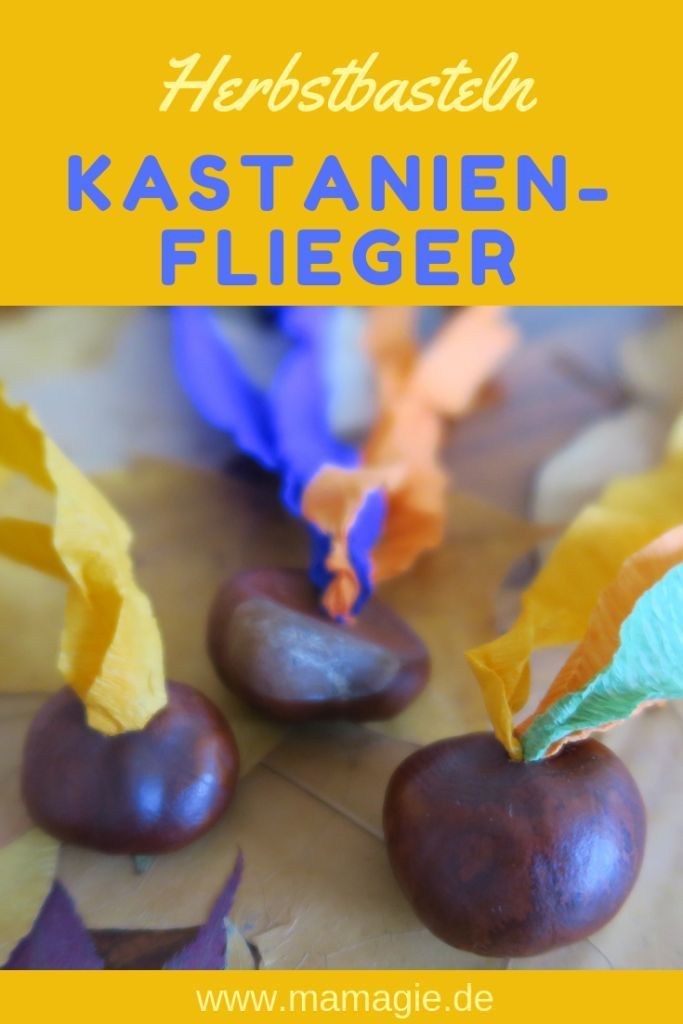DIY Dienstag: Kastanienflieger #laternebastelnkinder