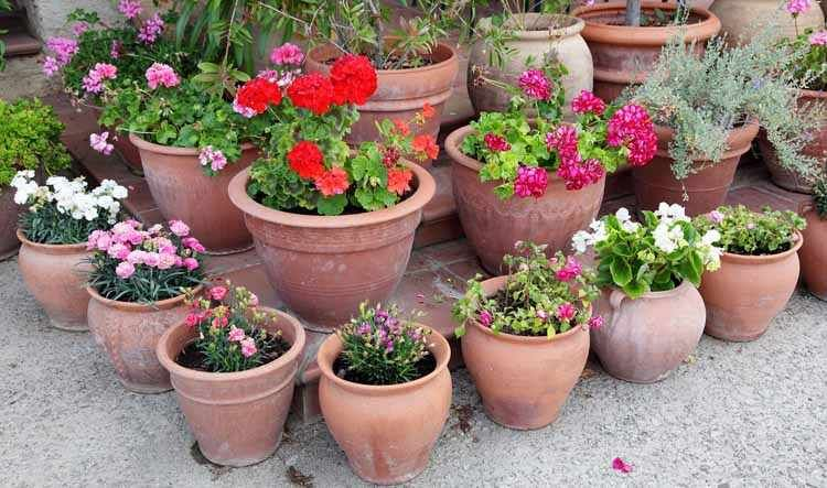 Y si nos decidimos por estas macetas para construir nuestro jardín - maceteros para jardin