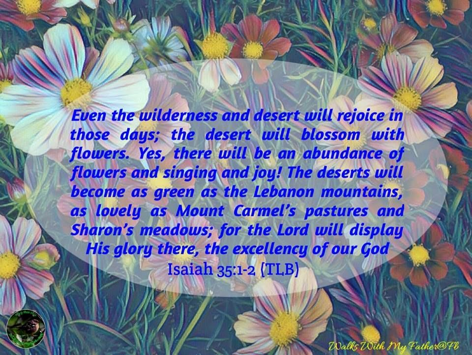 """Isaiah 35:1-2. """"Even the wilderness and desert will rejoice in those days; the desert will blossom with flowers.  Yes, there will be an abundance of flowe…   Kutipan"""