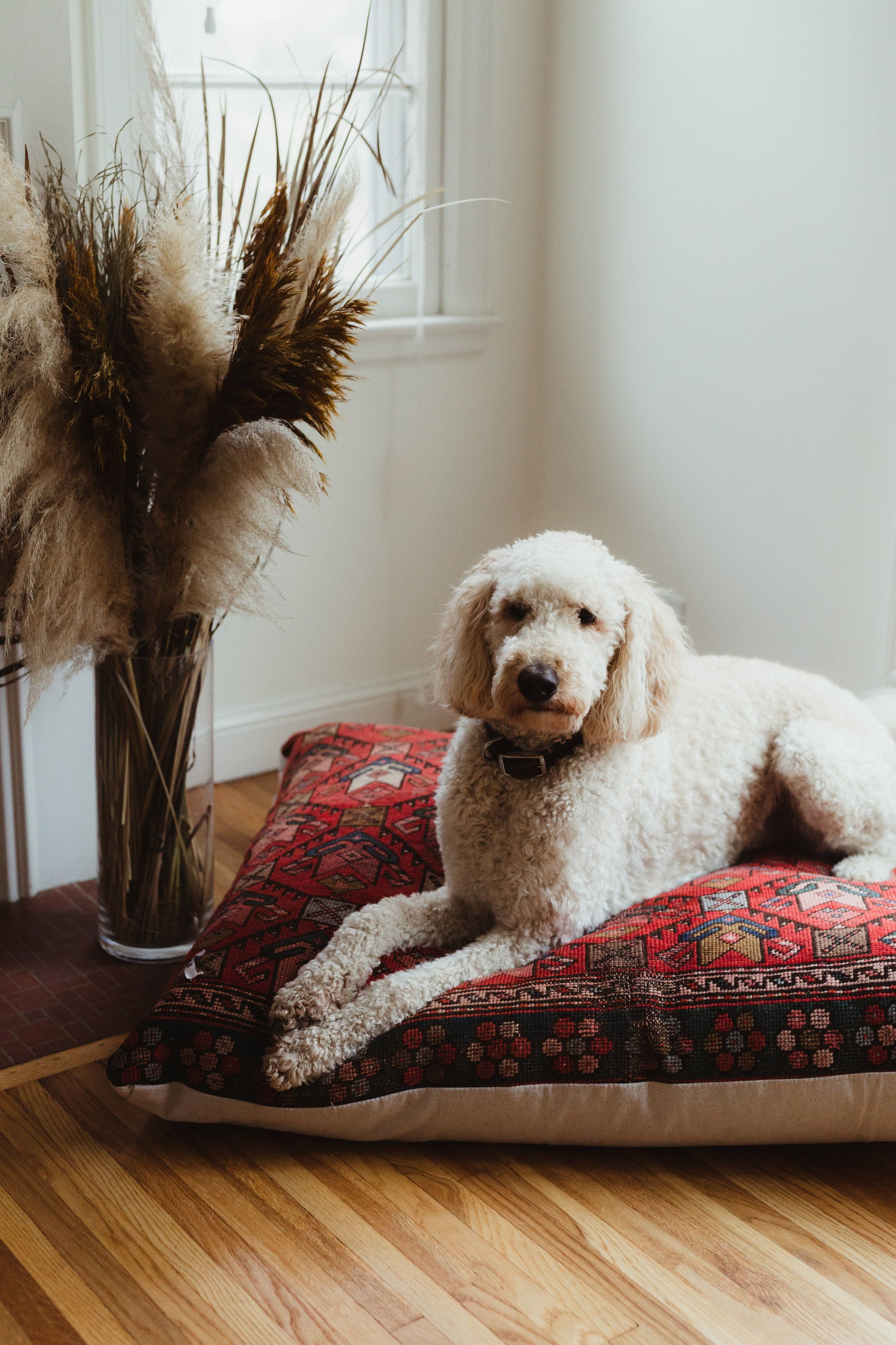 Large bed up to 125 lbs Pet beds, Large beds, Vintage rugs