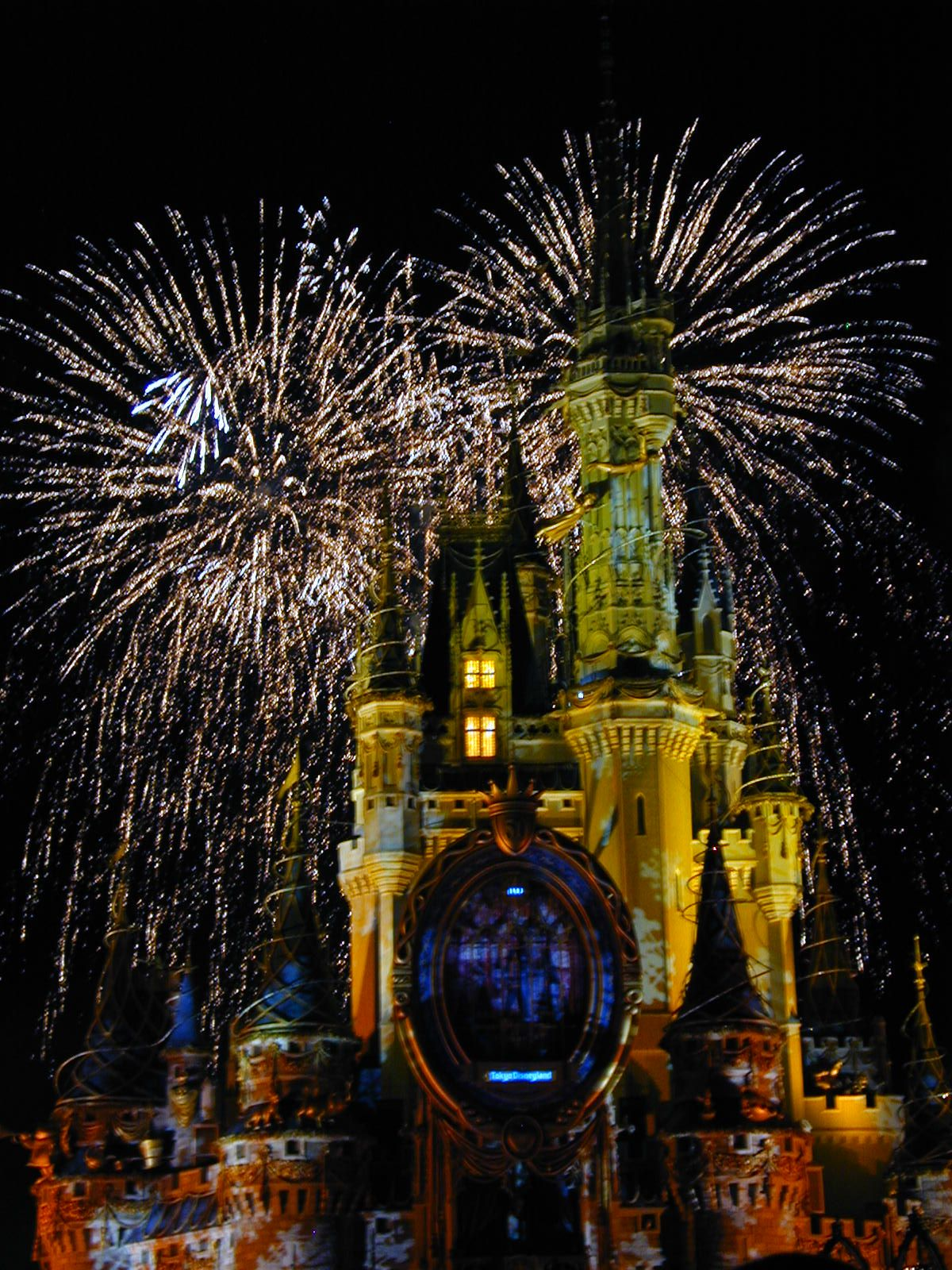 Disney world castle and fireworks disney is just the best