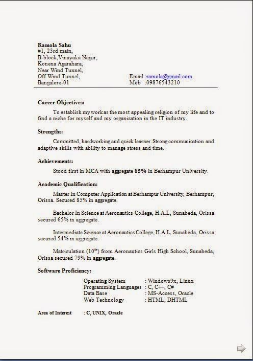 Irish Cv Template Sample Template Example Of Excellent Cv  Resume