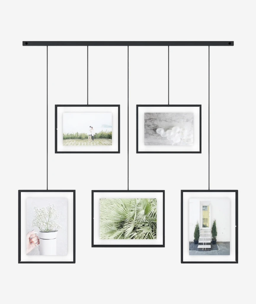 Exhibit Photo Display - 4 Colors