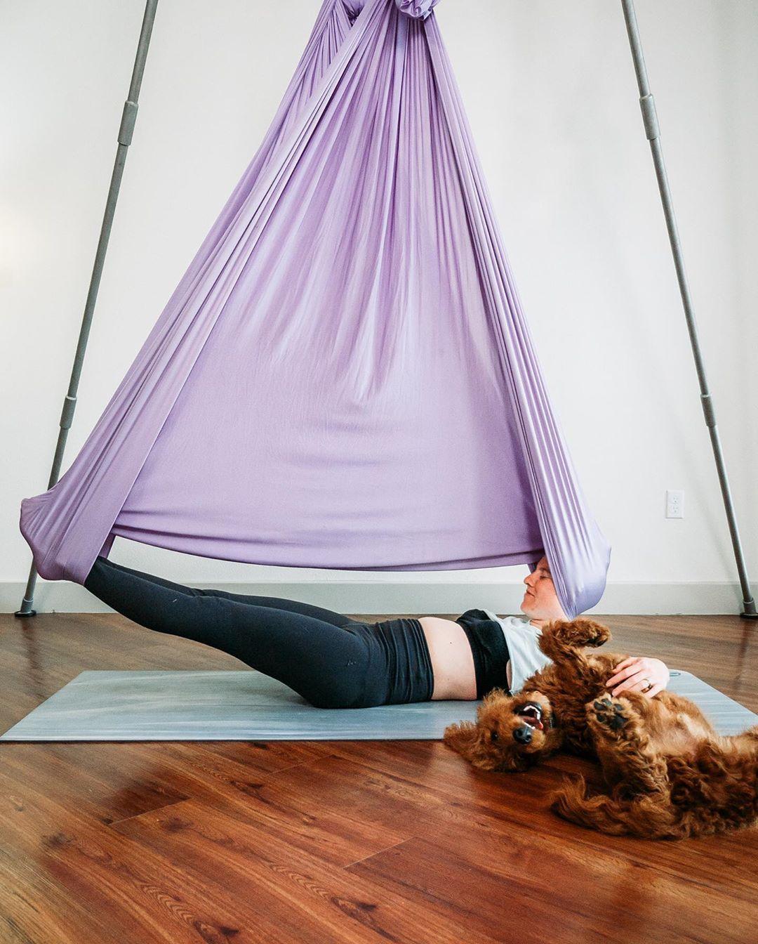 Pin Auf Aerial Yoga