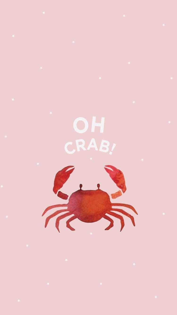 Iphone And Android Wallpapers Pink Crab Wallpaper For Iphone And Android Cute Wallpapers Cute Backgrounds Summer Wallpaper