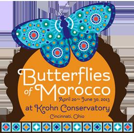 Special Events at Butterflies of Morocco! Cincinnati
