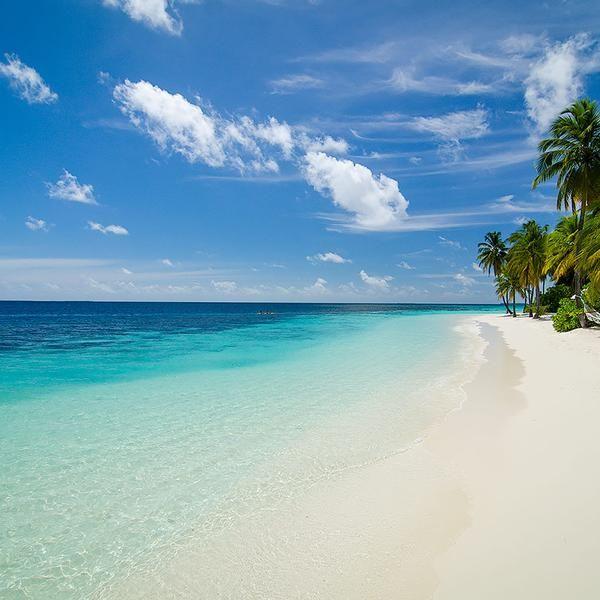 Maldives   Mirihi Island   around the world   Maldives ...