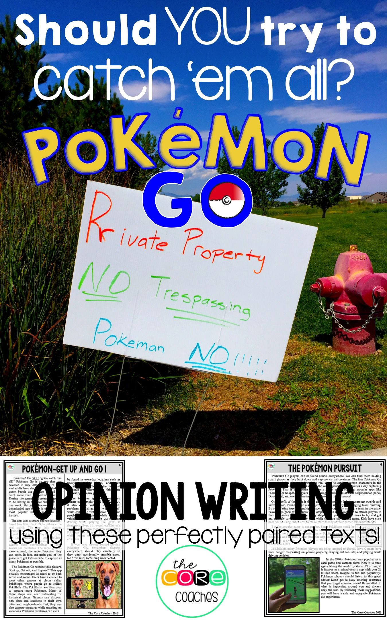 Fake Pokemon GO image