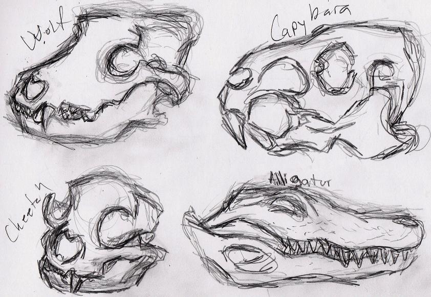 animal skull drawing on toned paper google search art media