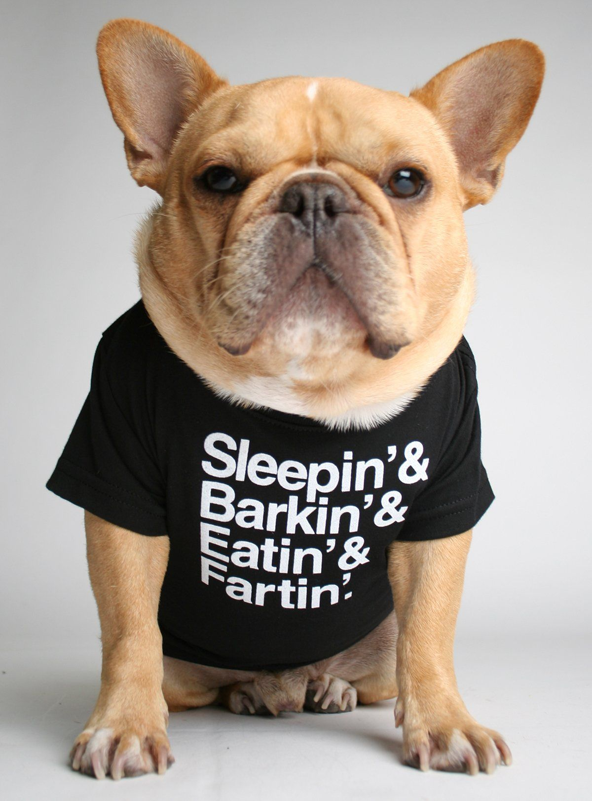 Sleepin Barkin Eatin Fartin Dog Tee French Bulldog French