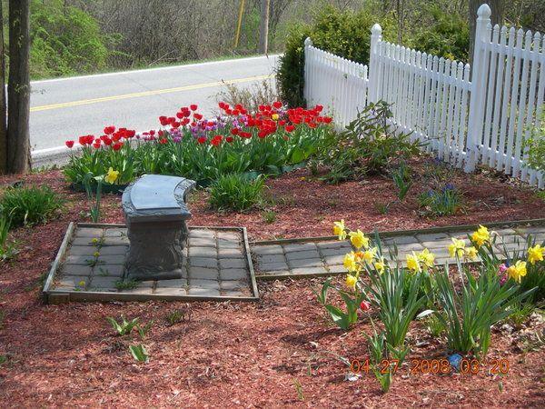 Cheap Landscaping Ideas For Back Yard | great backyard ... on Cheap Back Garden Ideas id=57032