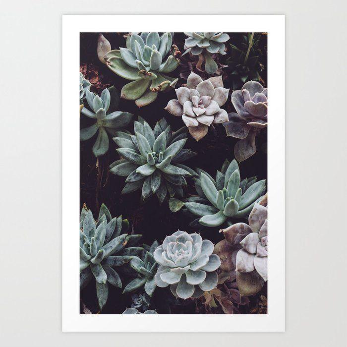 Succulent Garden Art Print by homelove #homedecor #art #wallart