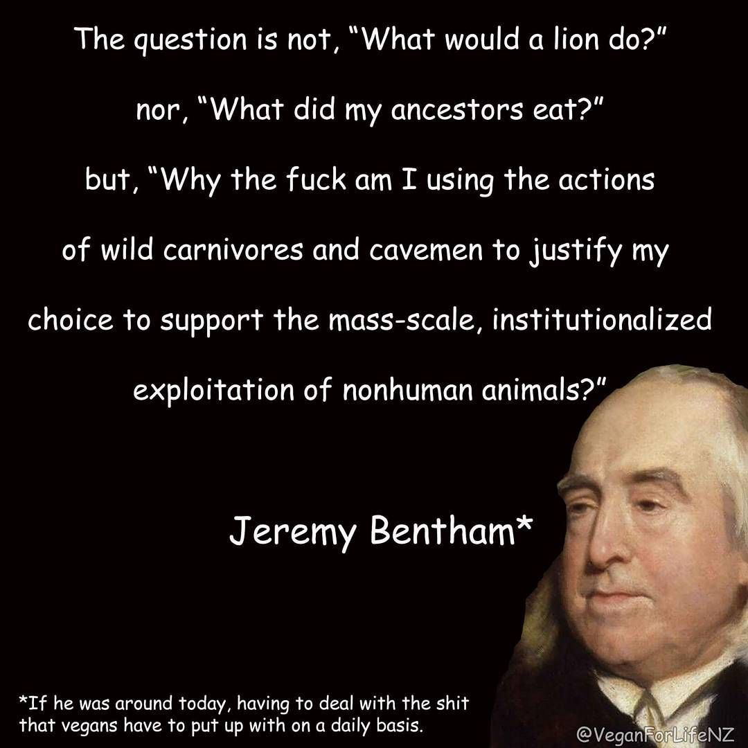 There Is A Really Famous Quote By Jeremy Bentham About Animals