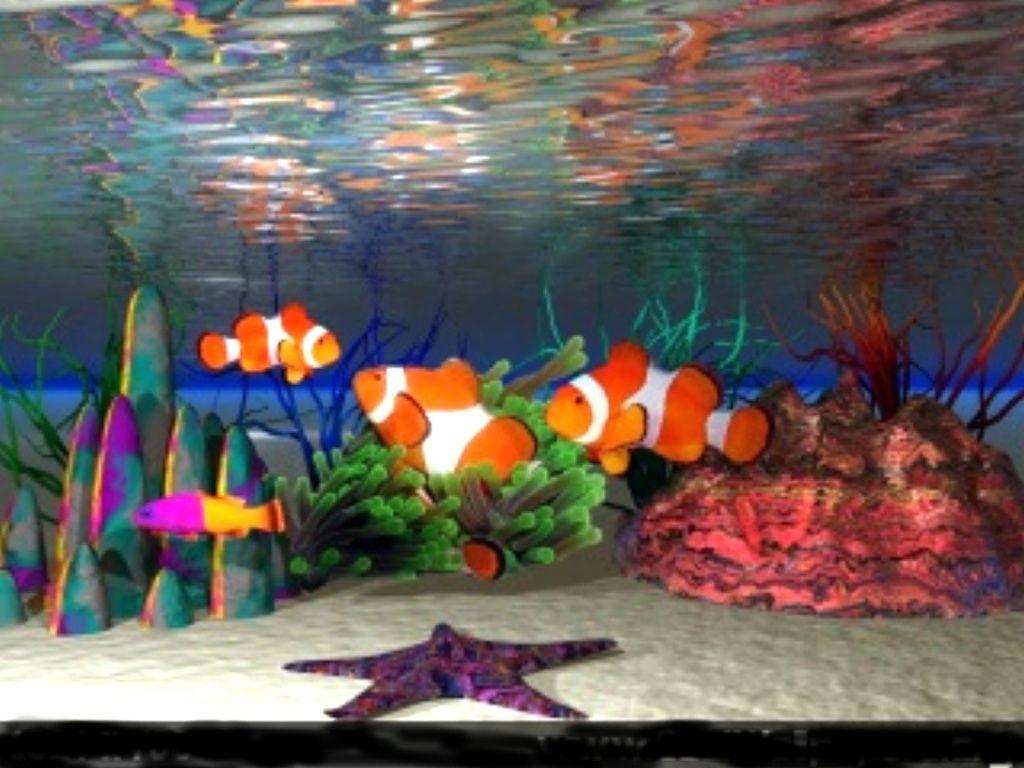 Fish aquarium screensaver - Fish Fish Aquarium Screensavers