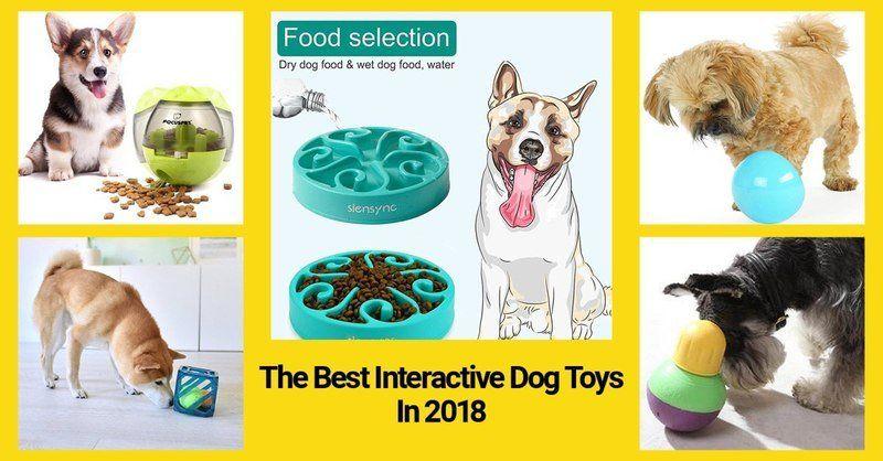 20 Best Interactive Dog Toys Under 30 In 2020 Interactive Dog